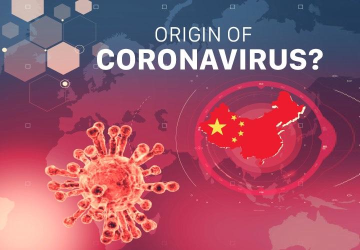 Coronavirus origin